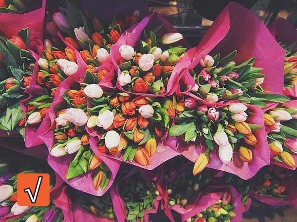 einstellungstest floristin